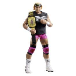 wwe hall of champions 3 - billy gunn accessories