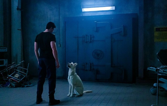 titans - conner review - conner-and-krypto-