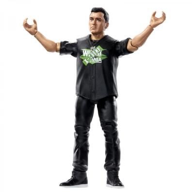 wwe basics wrestlemania 36 shane mcmahon - arms out
