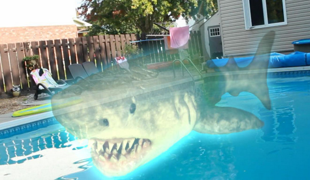 ouija shark review - ouija shark