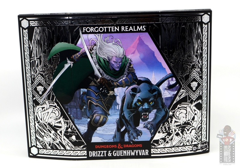 dungeons and dragons drizzt and guenhwyvar figure review - front package