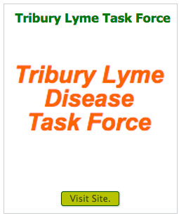 tribury-lyme-task-force