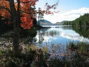 Infectolab - Maine Eagle Lake