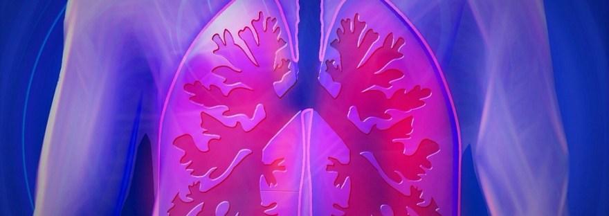Infectolab - pulmonary system
