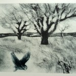 Printmakers' Showcase, 6-14 July