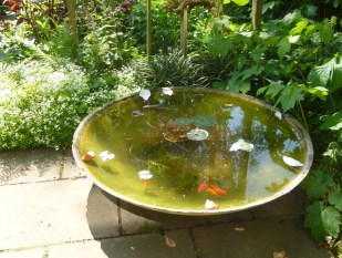 Peter Beardsley's Garden fishbowl