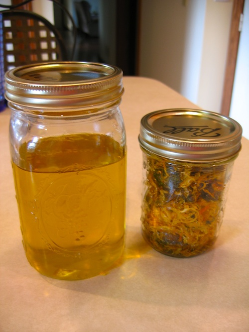 Calendula infused oil and flowers