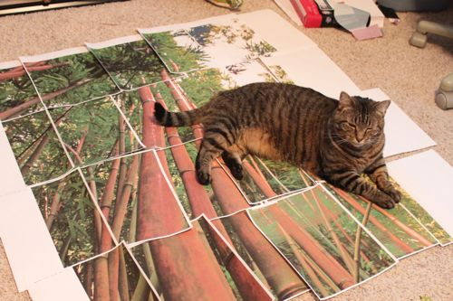 Puddin on bamboo paper tiles