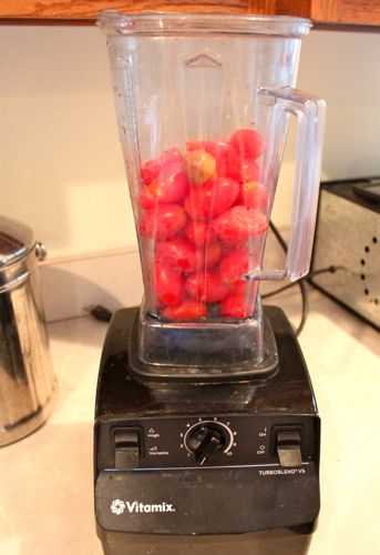 Tomatoes in the Vitamix