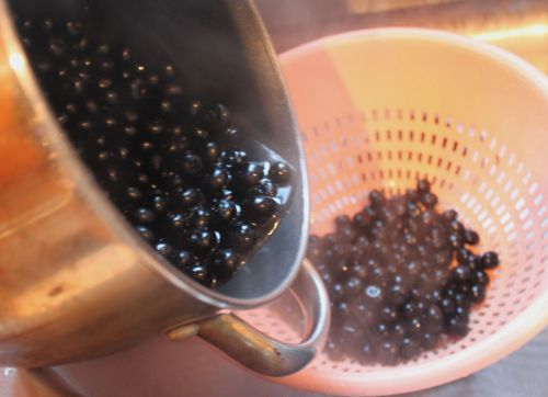 Pouring blueberries back into the colander