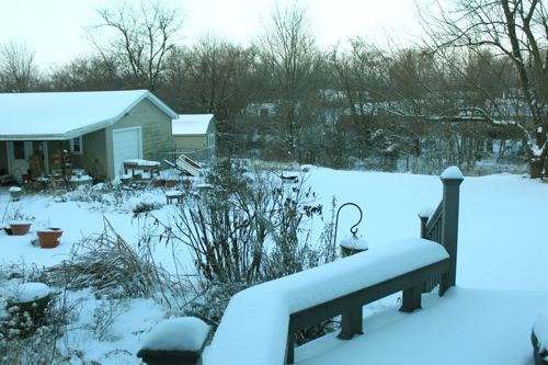 Snow view out our back door