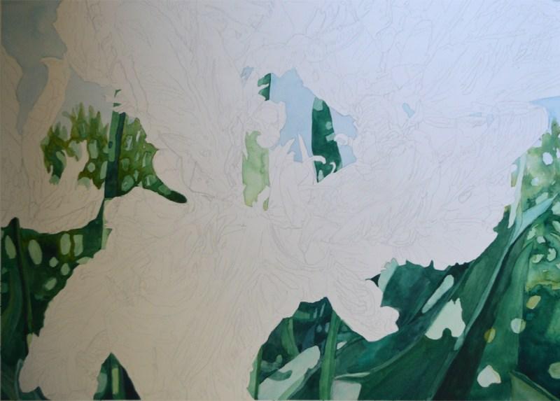Tulip step3 - Lynda Hoffman-Snodgrass