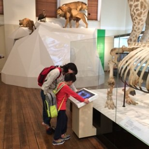 Family friendly options for learning in Wild Planet