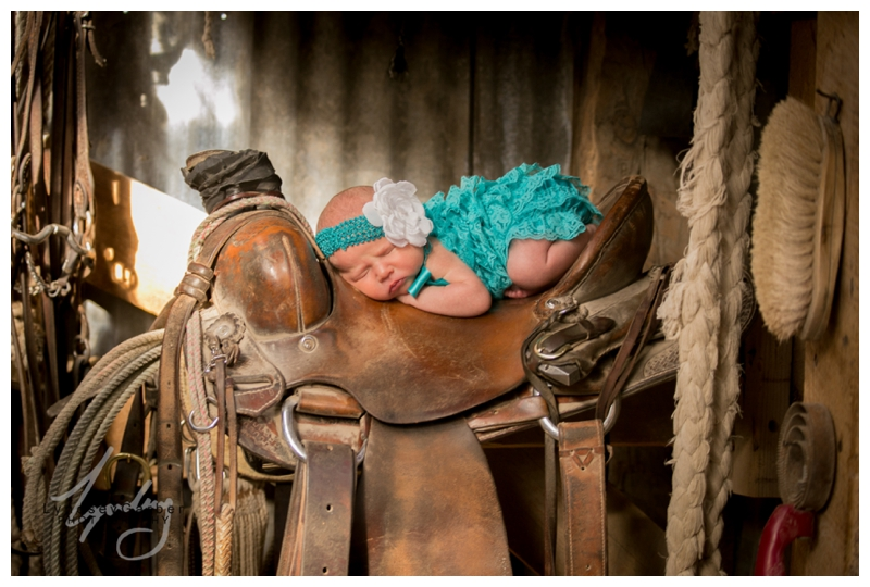 new mexico, newborn, portrait, photography, ranch, cowboy, western, saddle