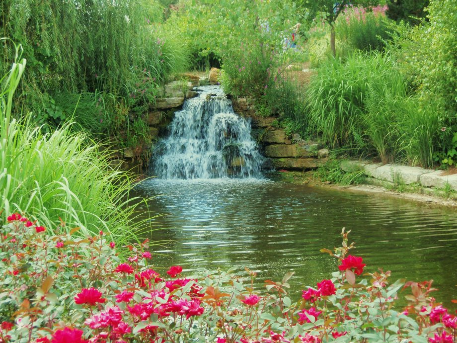 an image of a waterfall surround by lush greenery and pink flowers--nature is another of the 13 things for which I am thankful
