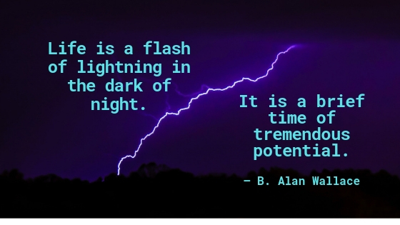 Image of lightning in the dark. Quotation: Life is a flash of lightning in the dark of night. It is a brief time of tremendous potential. B. Alan Wallace--So do what you love now.