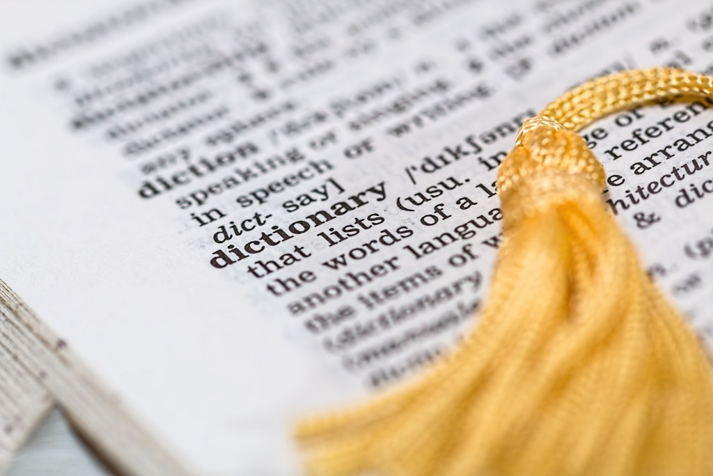 Image of the word dictionary in a dictionary--Are you in love with words? Take this quiz on lynettemburrows.com