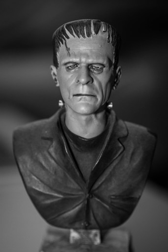 Image of Frankenstien bust illustration Head transplant, Science or Science Fiction?