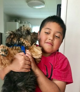 Image of my yorkie kissing my grandson