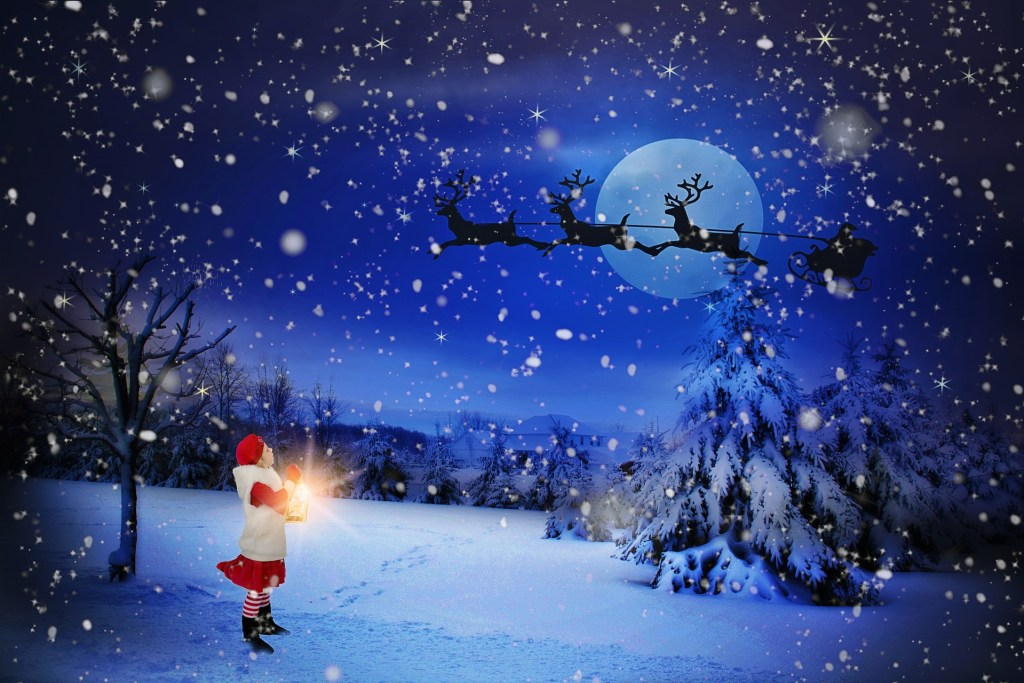 snowy night in a pine forest with the flying reindeer against a full moon--believe in the impossible