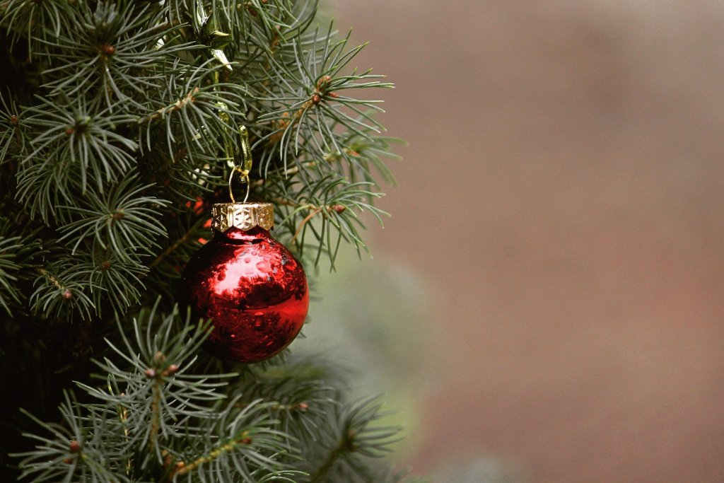 image of a red Christmas bulb ornament on a green Christmas tree--is mixing holiday traditions with science a good thing?