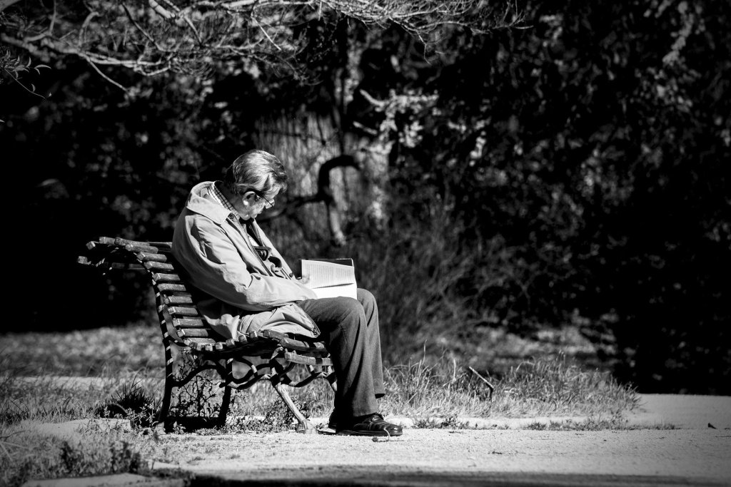 Photo of a man on a park bench, reading a book--he might be a thinking reader--are you?