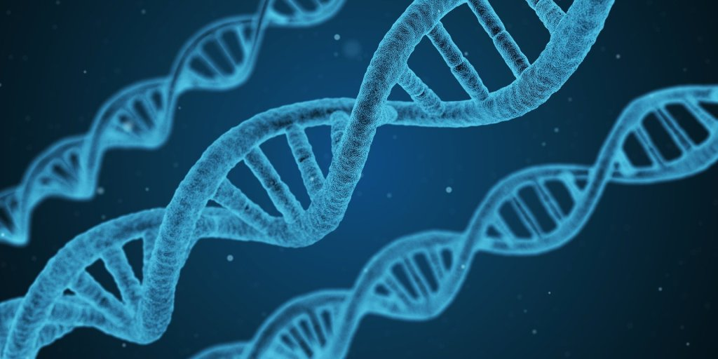 image of three strands of DNA colored light blue against a dark blue field. The DNA research done is part of the legacy of Dolly the sheep