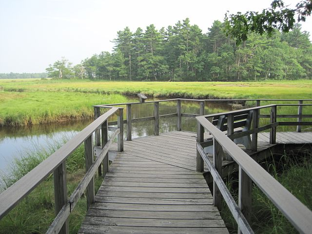 Image of a pier through a marsh at Wildlife Refuge  US Fish and Wildlife Service