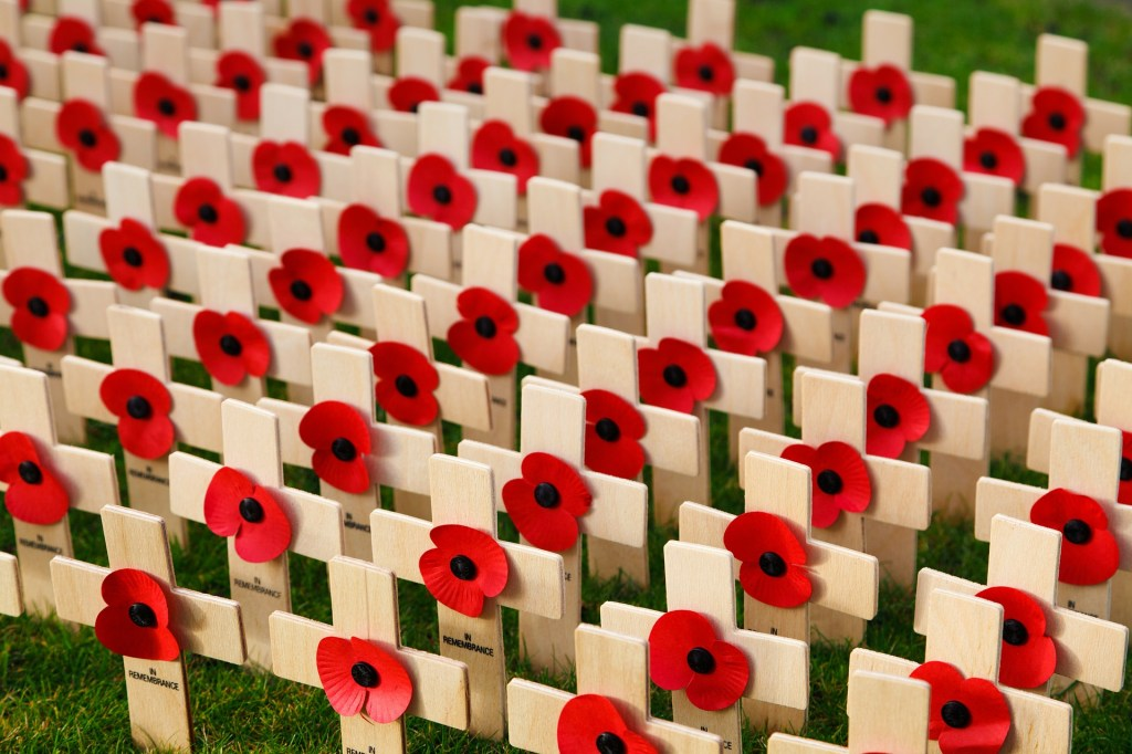 Image of rows of wooden crosses with a red poppy in the center of each cross--remember women who made the final sacrifice in WWI