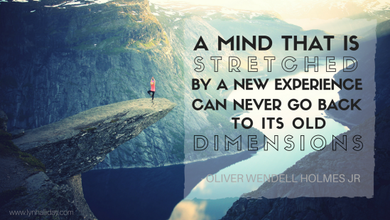 A mind that is stretched by a new experience can never go back to its old dimensions