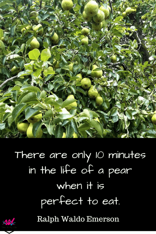 There are only 10 minutes in the life of a pear when it is perfect to eat. Ralph Waldo Emerson.