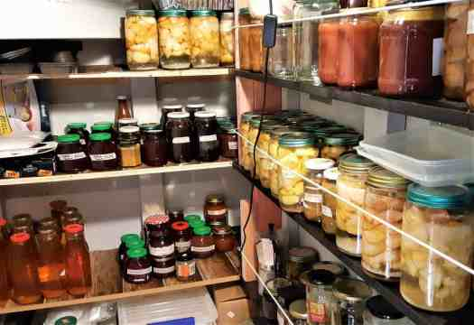 Pantry shelves filled with jars of bottled fruit.