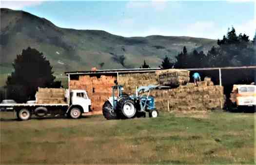 A tractor takes a clamp full of hay bales up to the hay shed where the men are waiting to stack them in their permanent home.