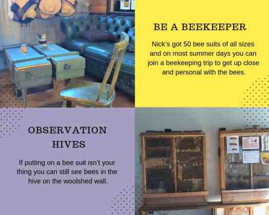 Beekeeper suits and observation hives.