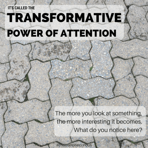 Transformative Power of Attention - What do you notice here?