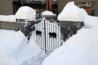 Garden Gate - Winter