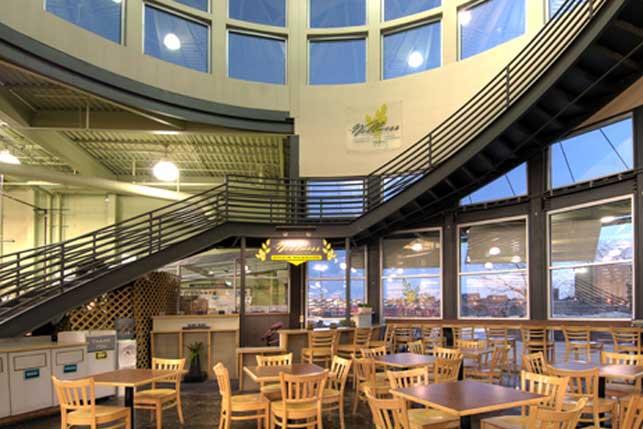 Medical  Wellness center Architecture and Interior Design