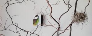Lynn Farwell Contemporary Artist Art Alchemy Studio Courtenay BC