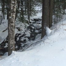 There's a stream along the carriage road up to the trailhead.
