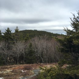 Along the Belknap Mountain blue trail, looking over to Gunstock Mountain.
