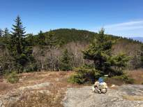 View of Gunstock Mountain from the meadow halfway down the blue trail.