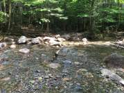 This is the stream crossing about a mile or so from the parking lot. We were sooooo glad to get back to this!