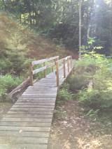 Boardwalk over the stream.