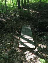 The Girl Scout Bridge. Near here is where the moose was spotted last weekend. Sadly, I spotted no moose.