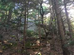 Big rock on the orange trail, just below the upper junction of the orange and green trails on the back side of Gunstock.