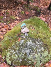 Cairn at the junction of the Marsh Crossing trail.