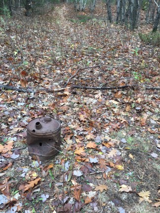Along Precipice Path, at the junction with an old, overgrown logging road, was this old gas can.