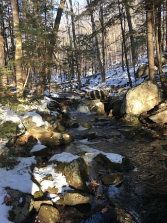 One of several stream crossings we encountered today.