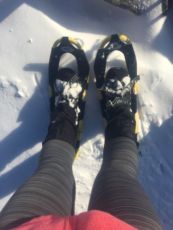 Snowshoes on the summit.