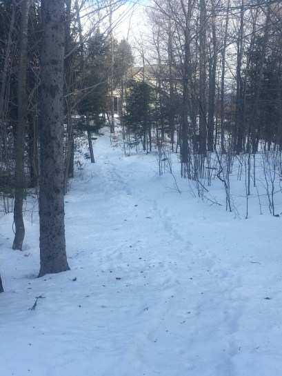 Near the end of the new trail - you can see one of the houses at Clover Ridge at the end.
